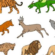 Multiple animal types