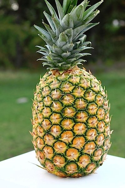 Picture of a Pineapple ~ Who lives in a pineapple under the sea..