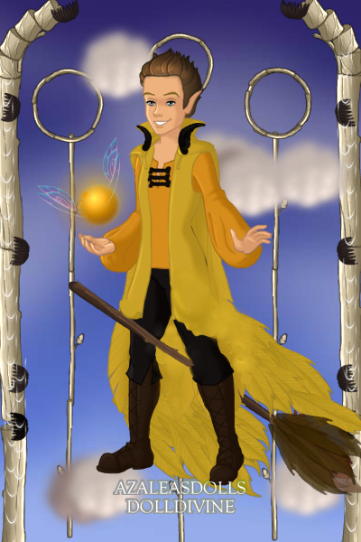 Cedric Diggory Team Captain Hufflepuff ~ For the 1994 game Harry and Cedric were